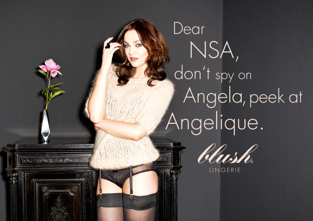 NSA blush Lingerie Obama